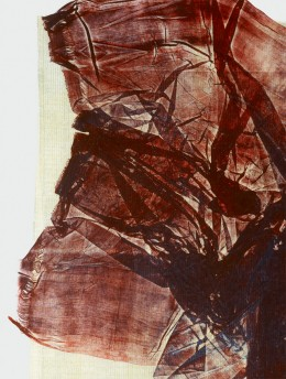 Liz Rideal, Ghost Sari (detail), 2001. Courtesy of Gallery 339, Philadelphia, USA.